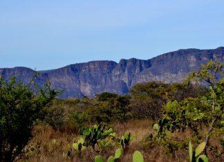 Bosque Tropical Caducifolio de Ixtlahuacán del Río