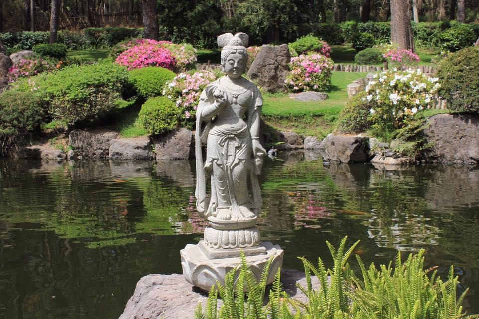 Jardín Japonés del Bosque Los Colomos. Foto: Gobierno de Guadalajara